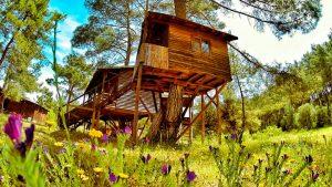 Olympos Woods Olimpos Antalya