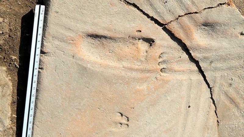 Assos Antik Kenti Arkeolojik Çalışmaları ve Kent Tarihi
